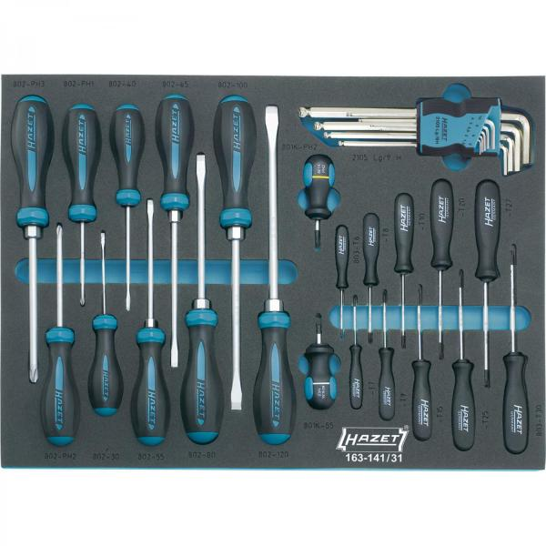 163-141/31 Screwdriver Set