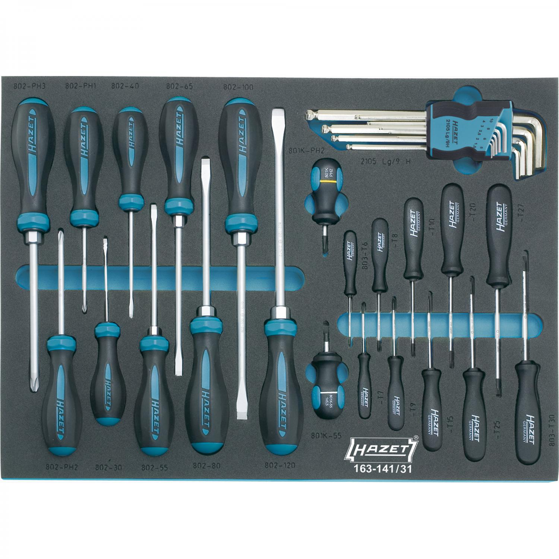 hazet 163 141 31 screwdriver set tool modules general. Black Bedroom Furniture Sets. Home Design Ideas